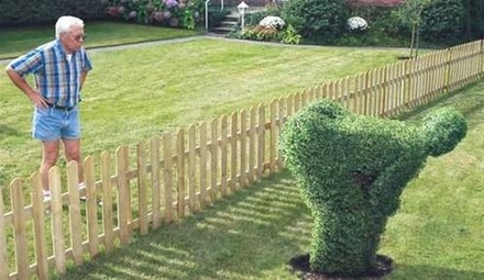 mooning-topiary